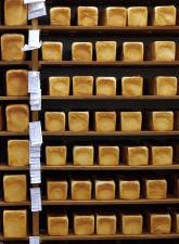 74歳のペリカンはパンを売る