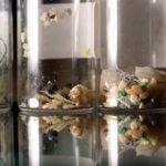 映画「海 消えたプラスチックの謎」